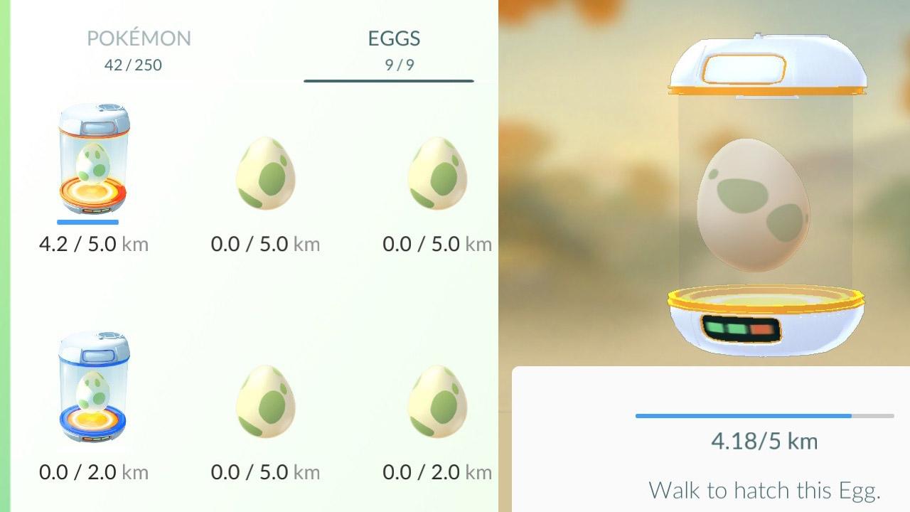 PGO_Eggs