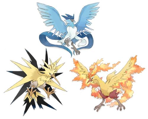 pokemon birds