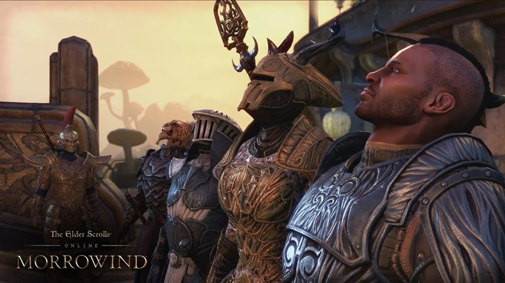 The Elder Scrolls Online_warden 02