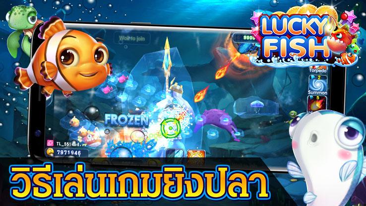 Lucky Fish 24828 010
