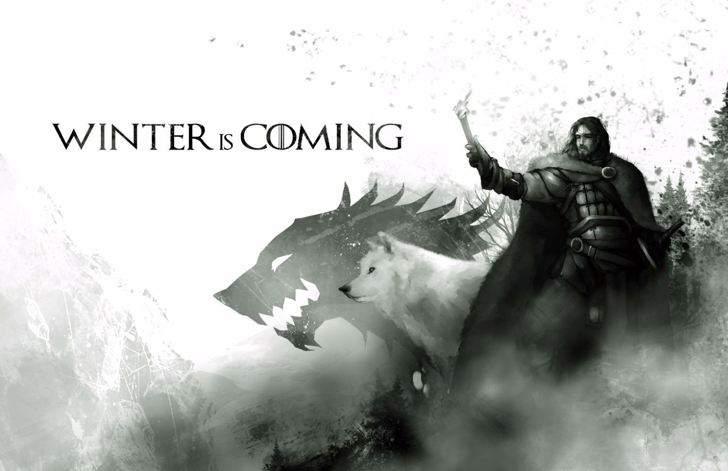 Game of Thrones Winter is Coming 2012019 1