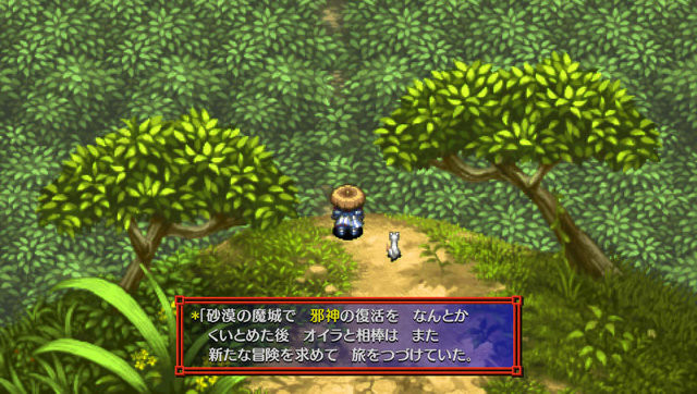 mystery dungeon 04