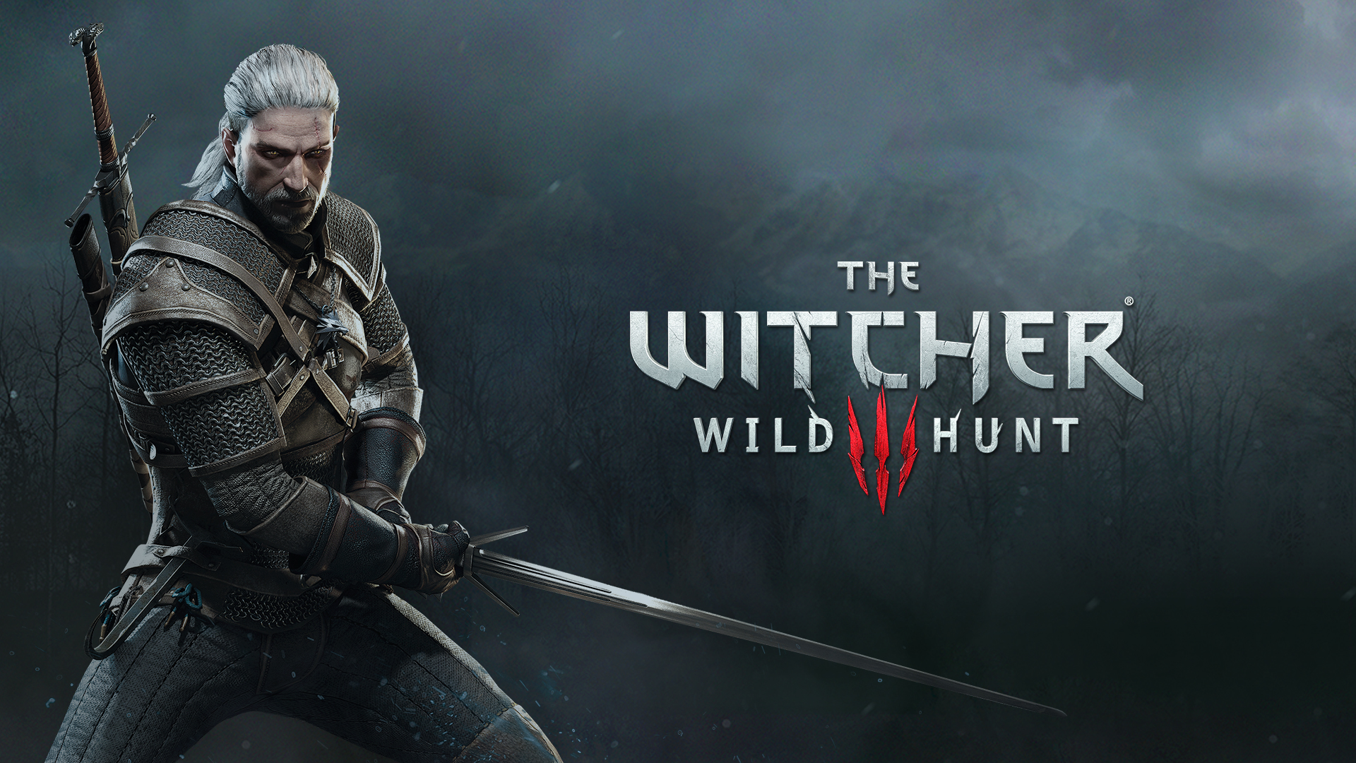 The Witcher 162020 1
